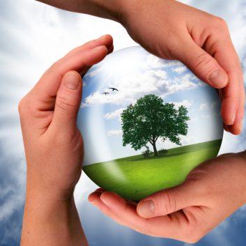 Symbolfoto-Green New Deal